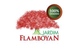 Jardim Flamboyan
